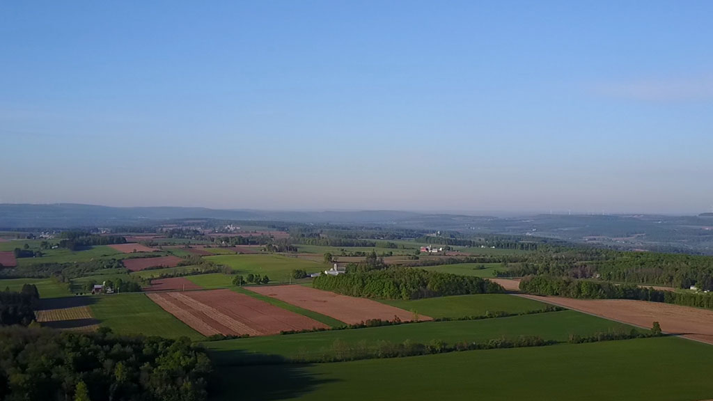 Spring Farm Fields