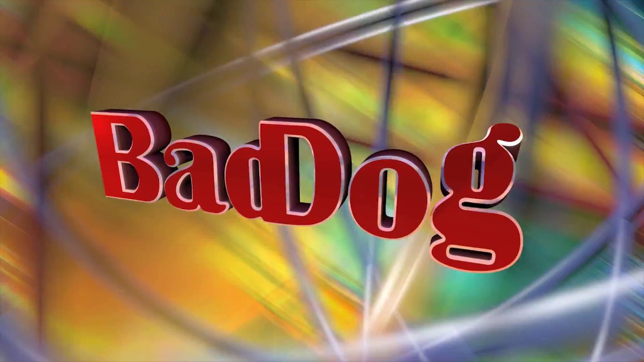 BadDog Digital Productions, Inc. Intro logo animation video clip